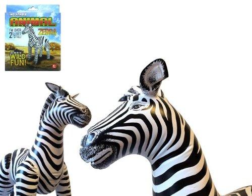Agorà - Zebra