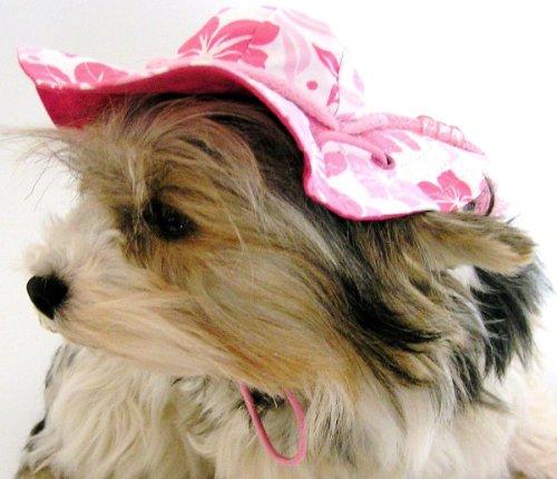 Artikelbild: Cooler Hundehut - Cappy - Bunter Schlapphut - Dogs Stars