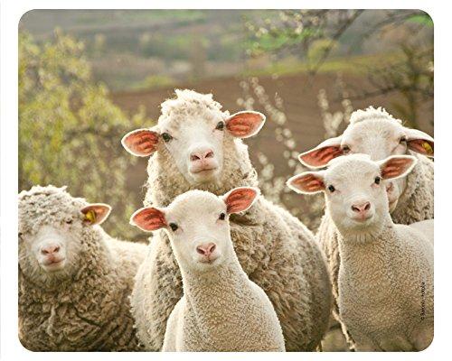 """CURIOUS SHEEPS """"farm"""", alta qualità, con animali e Mouse Pad-Tappetino per il Mouse con immagine di animali della fattoria, Made in Germany"""