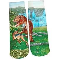 Depesche 5404 - Magische Socken Dino World, sortiert