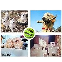 Dog Toys IQ Boule interactifs, non toxique dent de nettoyage Boule de chien pour la formation de jeu mastication par Hongyh