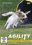 Agility: denk & renn - Aufbautraining für Anfänger und Fortgeschrittene