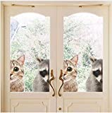 Mddjj Nette 3D Katze Waschbär Wandaufkleber Home Decor Für Fenster Aufkleber Tür Dekoration Nette Tiere Für Auto Aufkleber Wohnzimmer Kinder
