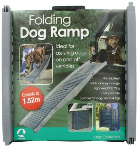 Folding Dog viaggio Rampa
