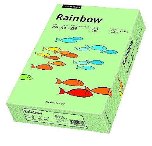 Kopierpapier A4 160g mitt.grün RAINBOW 88042637 250Bl Mitt Grün