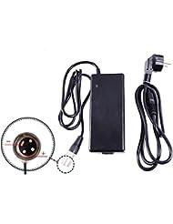 Chargeur de Batterie d'alimentation, 36V 3A, m363de (pour 36V Pedelec E-Bike, etc.) XLR–Mâle