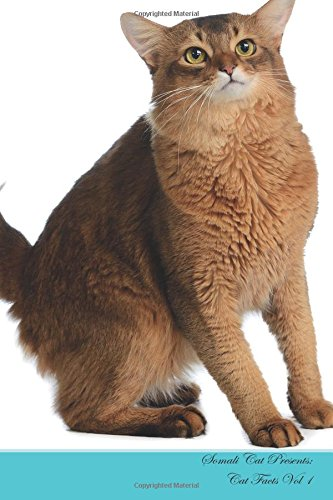 Somali-katze (Somali Cat Presents:  Cat Facts Workbook. Somali Cat Presents Cat Facts Workbook with Self Therapy, Journalling, Productivity Tracker with Self ... Includes: To Do Lists, Brainstorms. Volume 1)