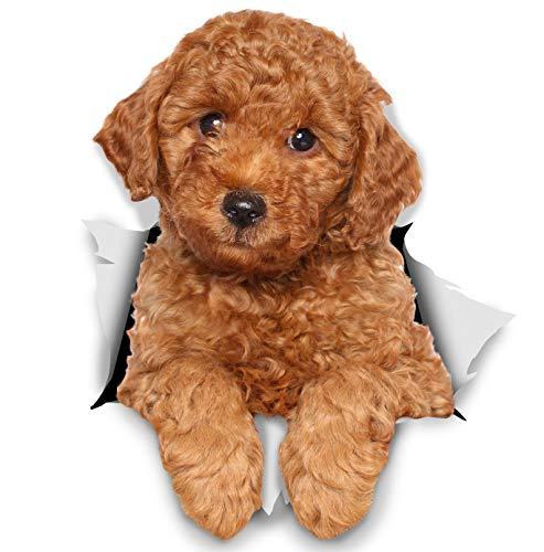 Winston & Bear 3D Hund Aufkleber - 2er-Pack - rote Pudel für Wand, Kühlschrank Pudel Hund Aufkleber
