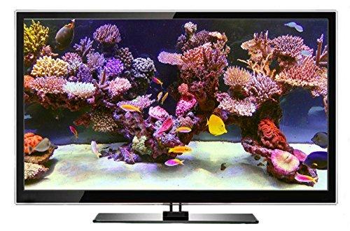 Aquarium DVD | TROPISCHES RIFF mit 4K ULTRA HD Download mit Natürlichen Geräuschen und Entspannender Musik - 5