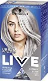 Grey Hair Dyes Review and Comparison