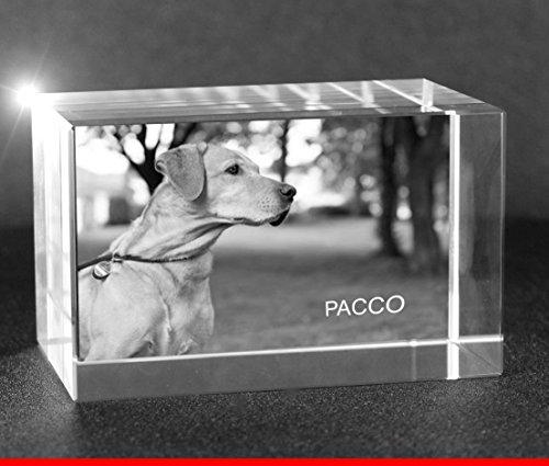 VIP-LASER 2D GRAVUR Glas Kristall Quader im Querformat L mit dem Foto von Deinem Hund. Dein Wunschfoto für die Ewigkeit mitten in Glas! Groesse L = 60x40x40mm -