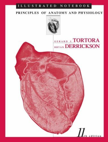 Illustrated Notebook to accompany Principles of Anatomy and Physiology by Gerard J. Tortora (2005-07-29)