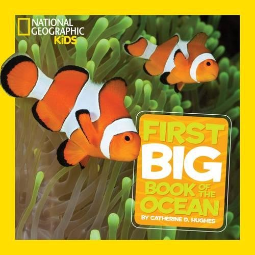 National Geographic Little Kids First Big Book of the Ocean (First Big Books)