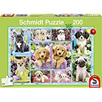 Schmidt 56162 Game, Multicolour