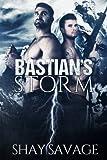 Bastian's Storm: Volume 2 (Surviving Raine)