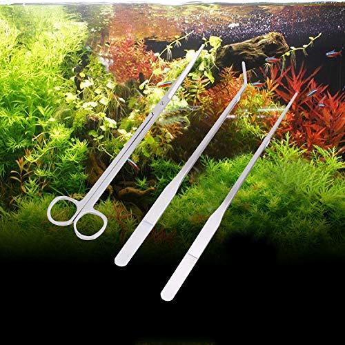 XINGRUI Reinigungswerkzeug 3 STÜCKE Edelstahl Schere, Pinzette und Clip, Baum Pflanze Gras Miniaturen Aquarium Landschaft Trim Tools XINGRUI