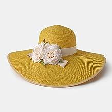 LIANGLIANG-maozi Sombrero De Sol Summer Women Large Cap Eaves Outdoor  Protección Solar Gorra De 9e09ec7516f