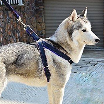fakeface verhindert Zerren Verstellbare gepolsterte Hundegeschirr Weste Heavy Duty Denim Pet Leine-Set für große/medium/kleine Hunde/Katzen -