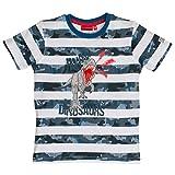 SALT AND PEPPER Jungen T-Shirt Giants Stripe, Blau (Middle Blue 432), 116 (Herstellergröße: 116/122)