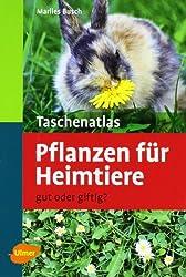 Taschenatlas Pflanzen für Heimtiere: Gut oder giftig?