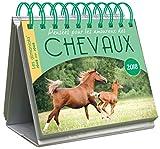 Telecharger Livres CALENDRIER Almaniak Pensees pour les amoureux des chevaux 2018 (PDF,EPUB,MOBI) gratuits en Francaise