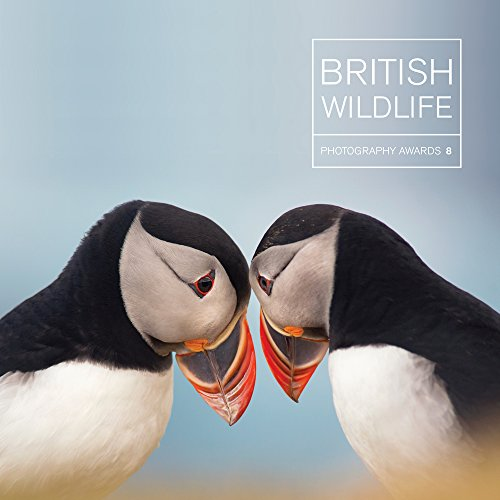 British Wildlife Photography Awards 8: Collection 8 por Maggie Gowan
