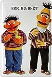 Ernie und Bert Funny Witziges Blechschild 20 x 30 Retro Blech 993