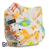 LittleBloom Nappies