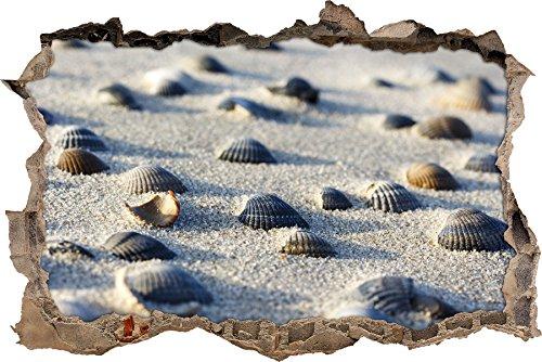 Preisvergleich Produktbild Muscheln im Sand Wanddurchbruch im 3D-Look, Wand- oder Türaufkleber Format: 62x42cm, Wandsticker, Wandtattoo, Wanddekoration
