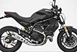 ZARD Edelstahl-Endtopf Special Edition Ducati Monster 797, 17- (Euro4)