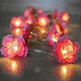 Guirnalda de 20 luces LED con forma de flor de rosas para la habitación y la guirnalda