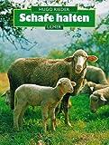 Schafe halten -