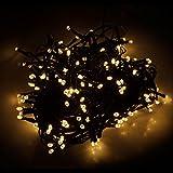 Ghirlanda luminosa 120 LEDs a luce bianca calda per alberi di Natale per interni ed esterni decorazione luminosa decorazione natalizia illuminazione interna illuminazione esterna