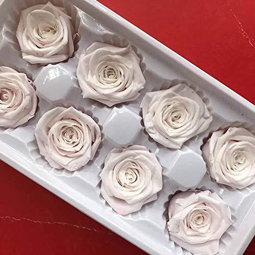 Schönheit Kopf (4 CM/8 PCS, Farbige ewige Kleine Rose Kopf, Schönheit Und Das Biest Erhalten Rose, trockenen Natürliche Frische Valentinstag Für Immer Rosen)