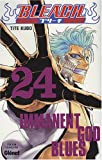 Bleach Vol.24