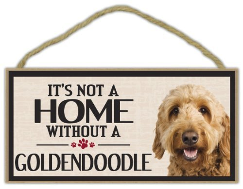 Norma Lily Holz Wandschild: It 's Not a Home Without a Goldendoodle (Golden Retriever Pudel)