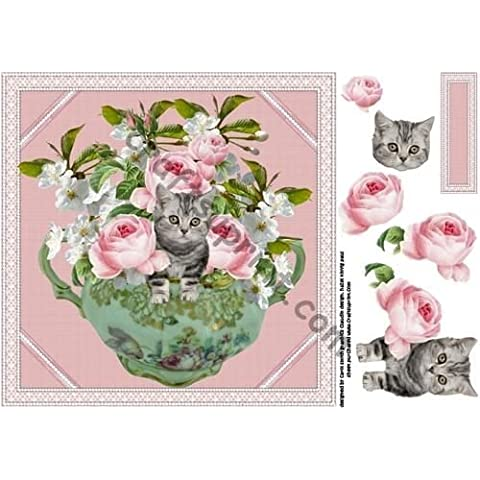 8 x 8 rosa peonías y caradura gatito por Carol Smith