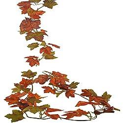 Shopping - Ratgeber 51HEs7VIHOL._AC_UL250_SR250,250_ Geniessen Sie die farbenfrohe Jahreszeit mit Herbst-Deko
