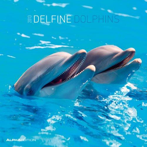 Delfine, Broschürenkalender 2013