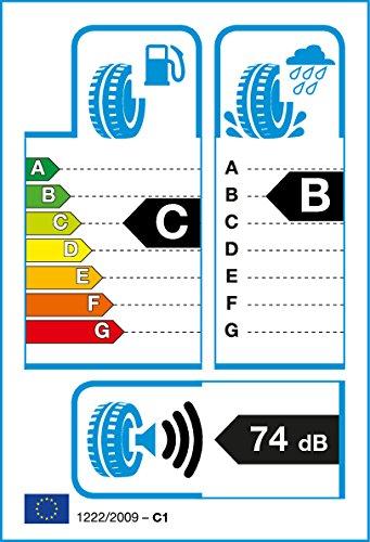 nexen-205-70r14-c-102t-8pr-nexen-roadian-at-bs-c-b-74-camion-pneu-pneu-dete