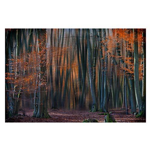 Eurographics Enchanted Forest, Aluminium-Dekoration, Rahmengröße: 11 x 16,5 x 1,25 cm, Galerieverpackt, gebürstetes Aluminium (Forest Enchanted Dekoration)