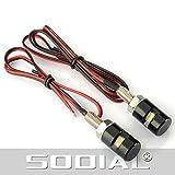 TOOGOO(R) 2 x lumieres LED a vis pour plaque d'immatriculation de moto & voiture