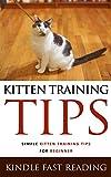 Kitten Training Tips:  Simple Kitten Training Tips For Beginners