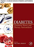 Diabetes: Chapter 2. Cerebral Ischemia in Diabetics and Oxidative Stress (English Edition)