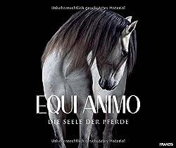 Equi Animo - Die Seele Der Pferde   Pferdefotografie   Equine Photography By Wiebke Haas
