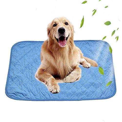 starter Hunde Kühlmatte Gel Pad Wasserdicht Komfort Bett für Kleine Mittlere Große Hunde Haustiere Blau Stuhlunterlage für Office Home (M) -