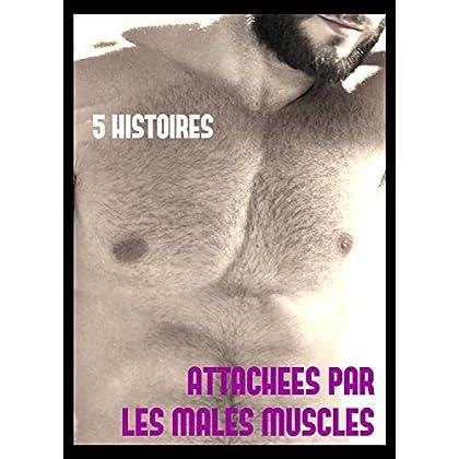 Attachées par les mâles musclés, 5 histoires