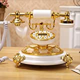 YSNUK Telefon, altmodisches antikes Gartenhaus Festnetz-Kreativ-Festnetztelefon Rotary-Telefon, Studie, Hotel