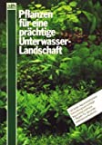 Pflanzen für eine prächtige Unterwasser-Landschaft Welche Pflanze für mein Aquarium? Über das richtige Einrichten und schöne Gestalten von Aquarien.