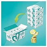 Pampers Baby Dry Windeln, Gr. 5 (11-24 kg), 1er Pack (1 x 144 Stück)